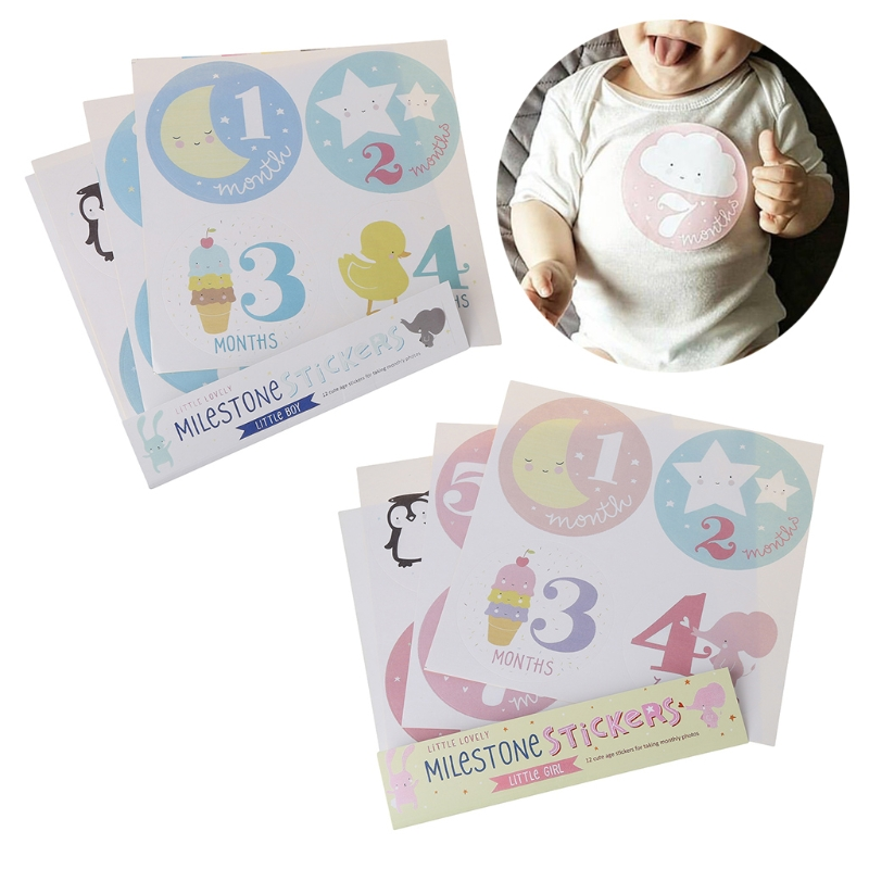 Month 1-12 Milestone Stickers Baby Monthly Photograph Stickers  57BF
