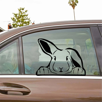Vinyl Rabbit Stickers Ussr Car Truck Body Side Door Sticker Decal Graphic Universal Car Side Door Stickers image