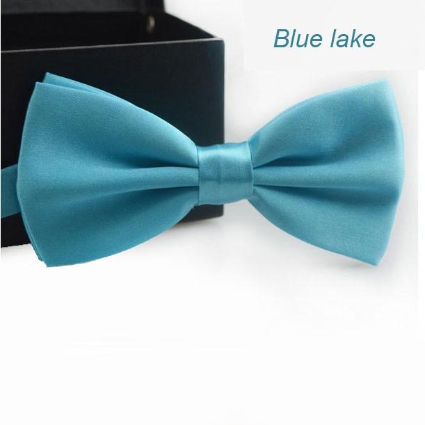 Classic Fashion Novelty Mens Adjustable Tuxedo Wedding Bow Tie Necktie Lake Blue Satin Gift Plaids Multicolor Adjust Neck Bow