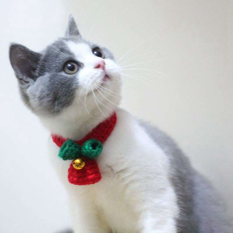 Handmade Cute Pet Christmas Collar Grooming Accessories Red And Green Wool Knitting Collars With Bell For Dogs in Collars from Home Garden
