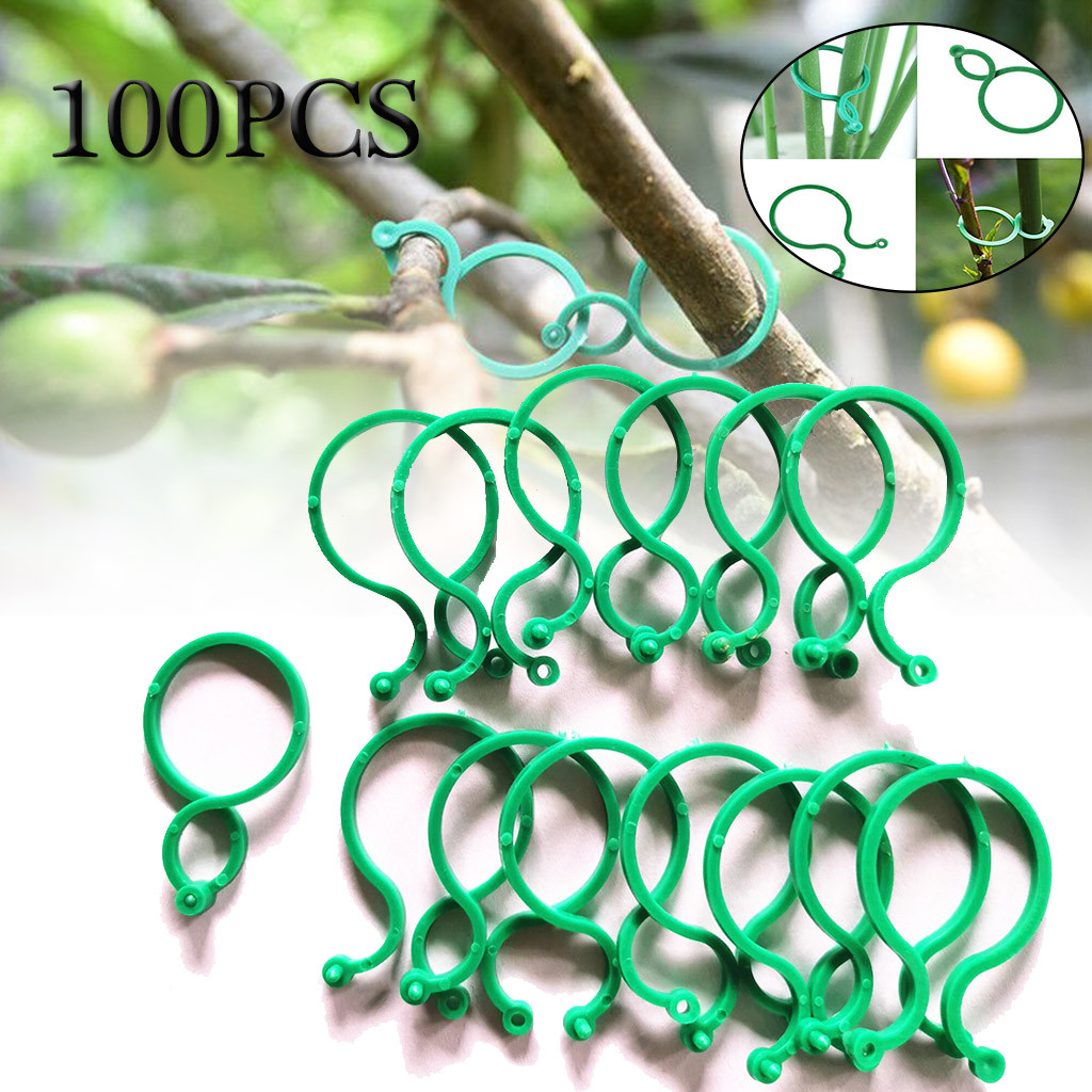 100 шт. связывающие зажимы для стебля ботаники, пряжка для садовых растений, инструмент для кольца, держатель для фиксации томатов, цветов