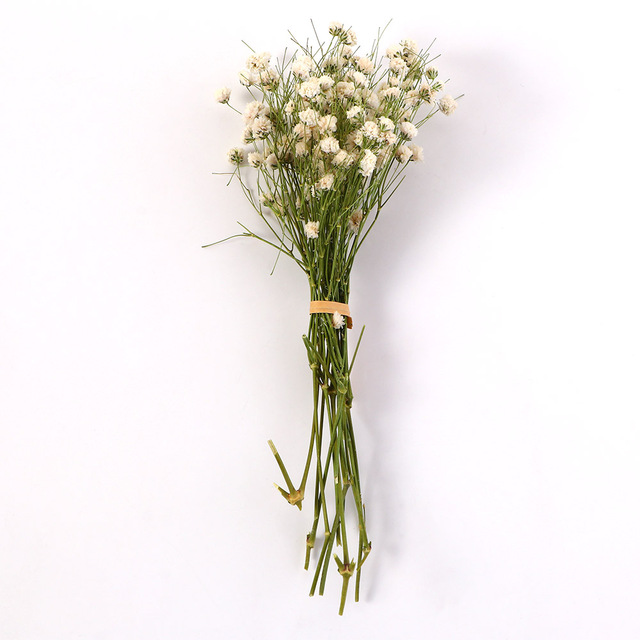 Wedding Decor Plant Stems Mini Babysbreath Natural Dried Bouquets Real Flower