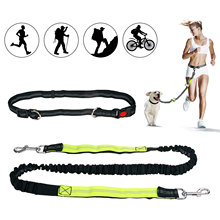 Hands-Free Dog Leash for Running Walking Hiking Reflective  Retractable Durable Bungee Lead with Adjustable Waist Belt