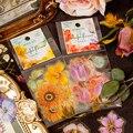 30 шт./компл. красочные с украшением в виде милого цветка золотое ПЭТ наклейки Скрапбукинг ярлыком дневник альбом с изображением милой бабоч...