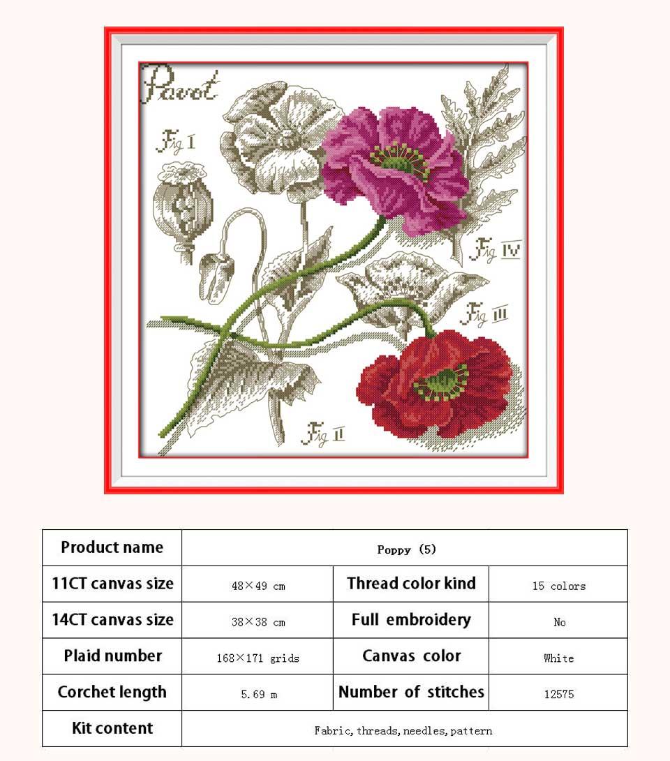 H527-罂粟花(5)