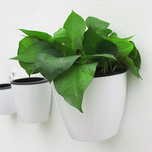PC автоматическое водопоглощающее настенное комнатное растение держатель цветочный горшок висячее растение горшки самостоятельно инструменты для полива сада