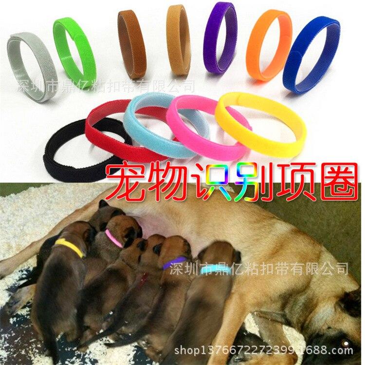 Hot Sales New Products Pet Dog Collar Pet Dog Training Collar Medium And Small Size Pet Supplies
