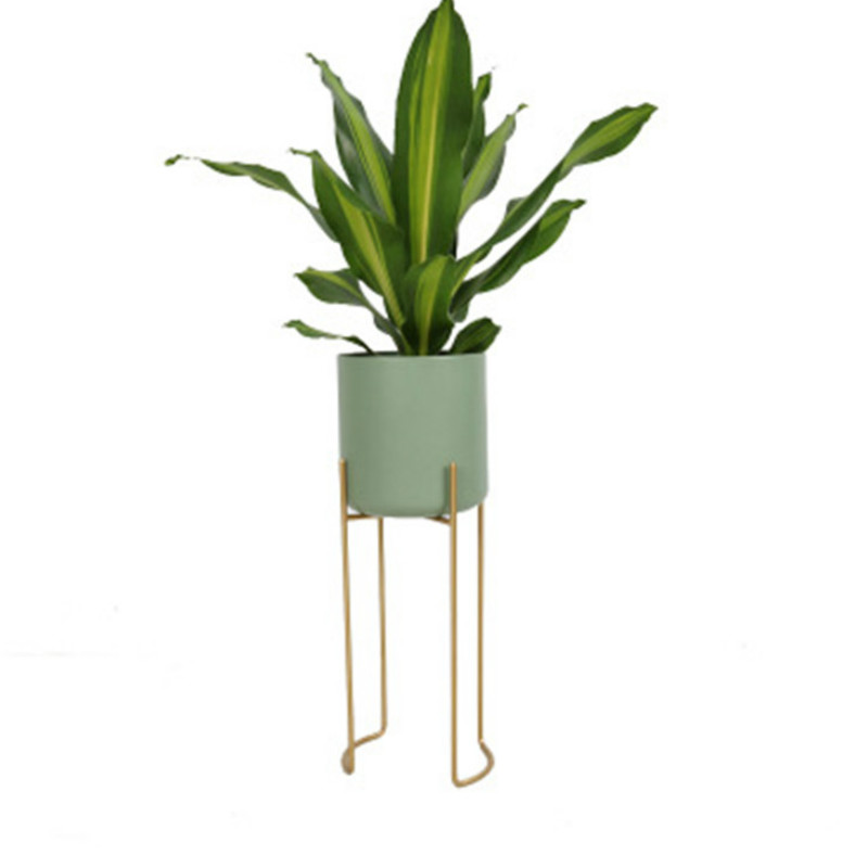 Nordic ins fashion floor flower stand monstera spring feather bamboo taro homestay design studio studio custom