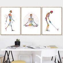 Anatomia humana cartaz em movimento esqueleto silhueta arte imprime ossos esqueléticos arte médica fitness decoração da lona pintura médico presente