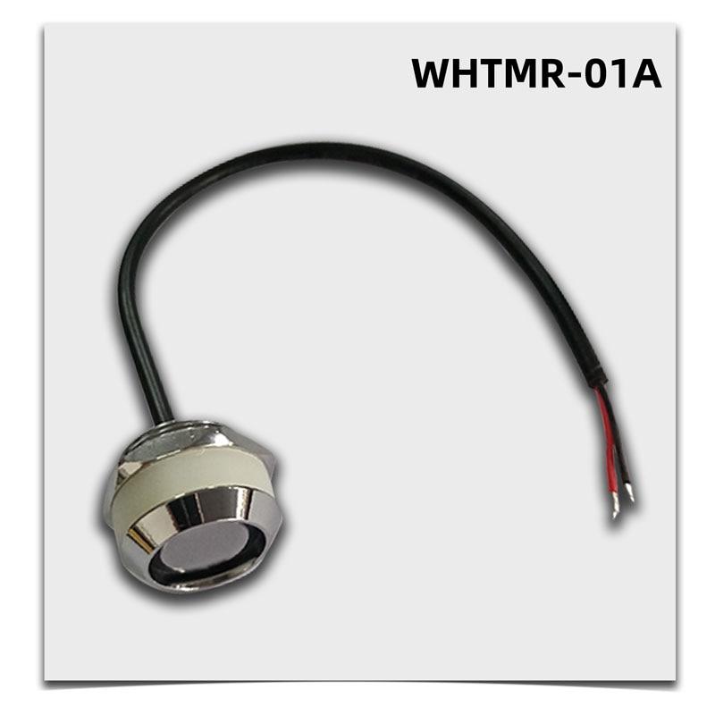 DS9092 TM1990 зонд считыватель WHTMR-01A для ACS, патруль, Системы
