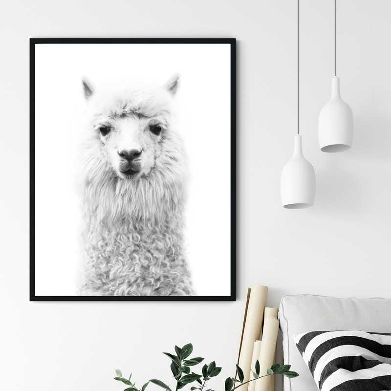 50x70cm No Frame YQQICC Alpaca Poster Canvas Art Painting Animal Prints Wall Art Nursery Decorative Picture Llama Black White Wall Kids Room Decor
