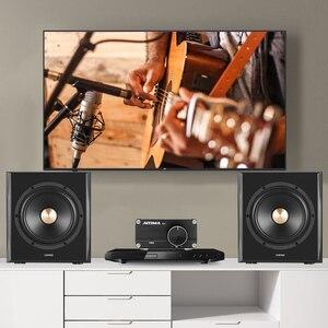 Image 5 - Aiyima TPA3116 100W Subwoofer Audio Versterker TPA3116D2 Mono Digitale Versterkers Amplificador Met NE5532 Op Amp