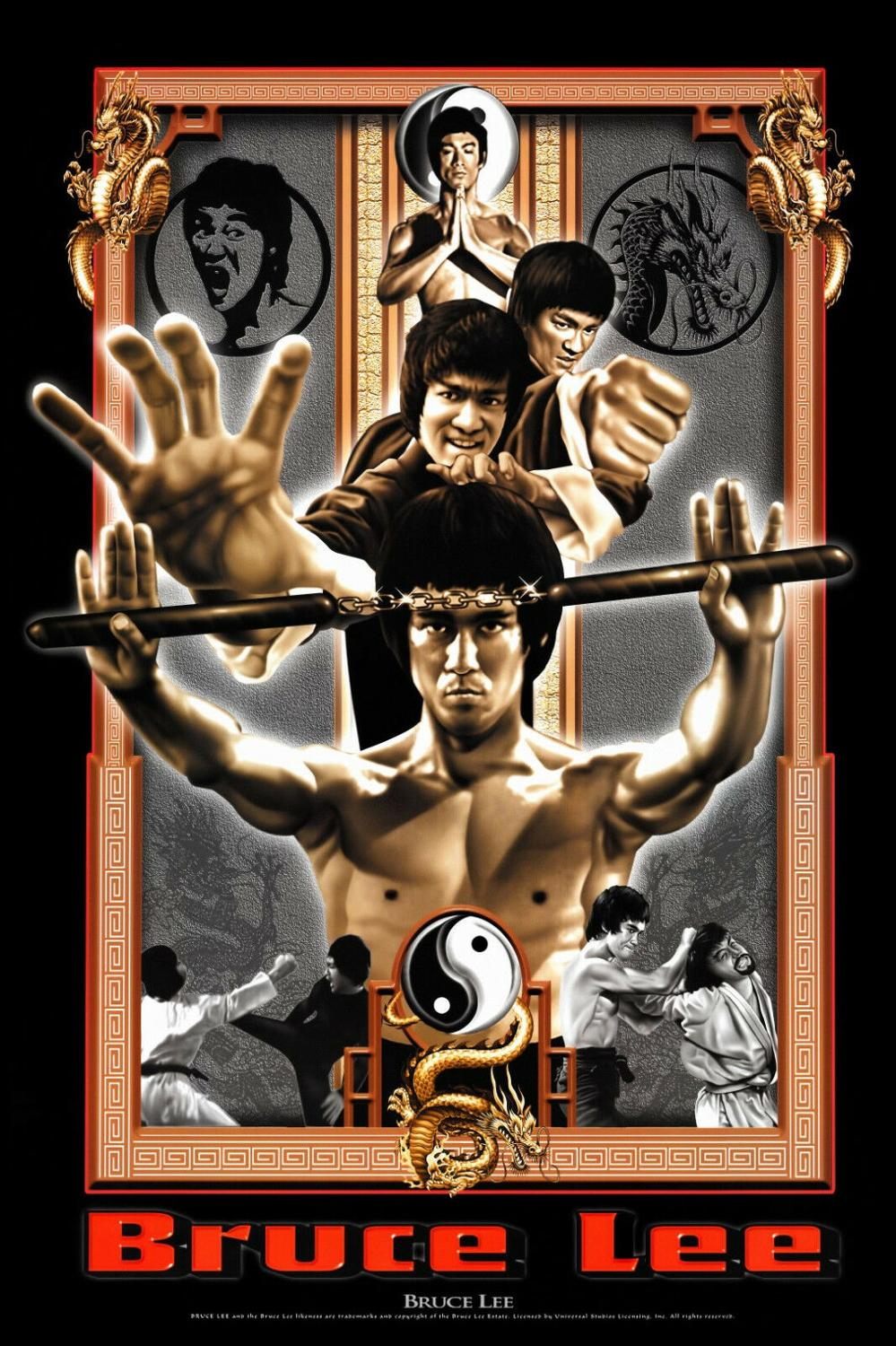 Enter The Dragon Classic Movie Silk Poster Bruce Lee Wall Art Canvas Print 24x36