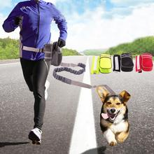 Adjustable Dog Leash Puppy Collar Running Training Lead Waist Belt Dogs Strap Pet Elastic Traction Rope Set Pets Accessories hand free elastic dog leash adjustable padded waist reflective running jogging walking pet lead belt with pouch bags 4 colors