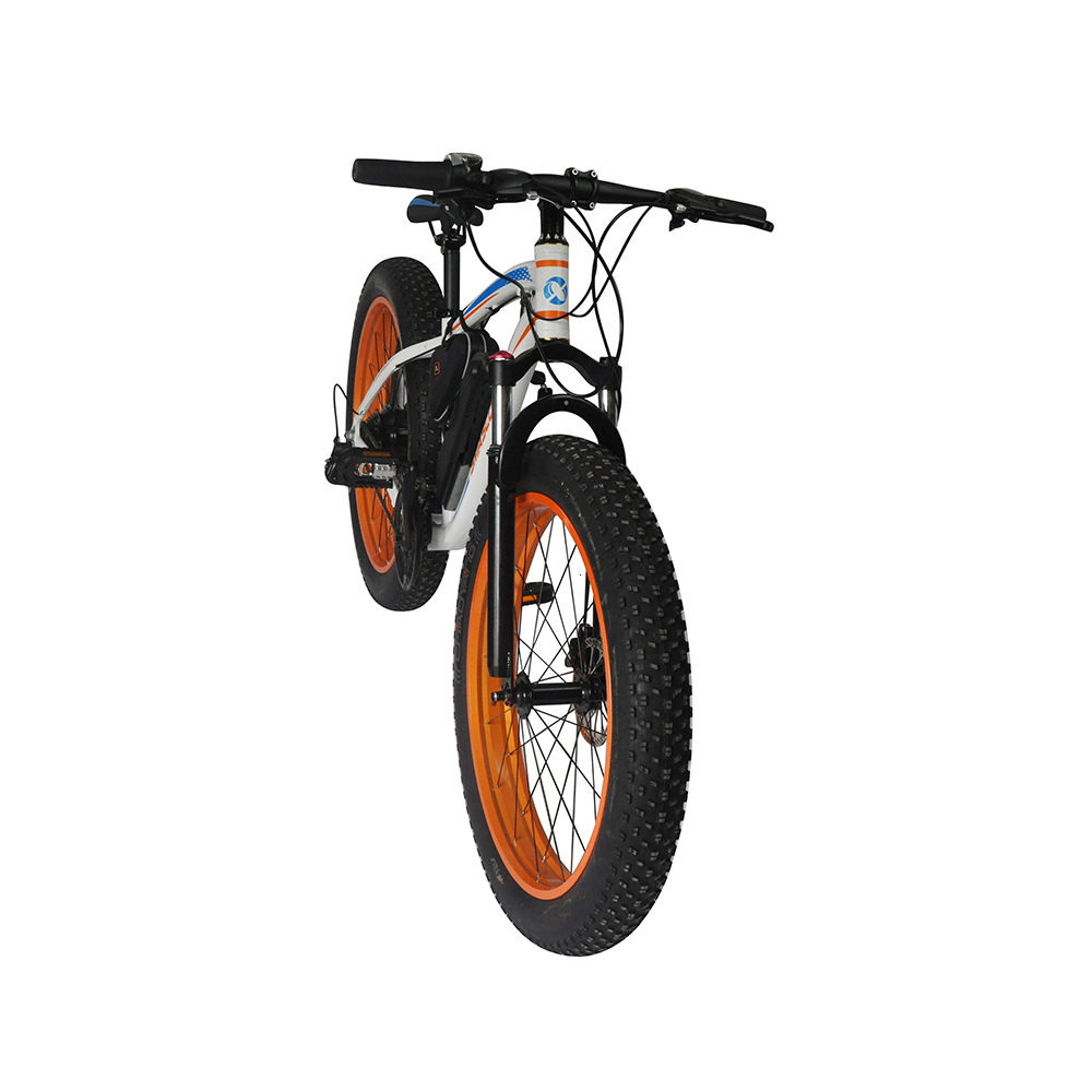 EcoRider E6-5 E6-5 48v 26inch 2 wheel Electric bicycle Big Fat Tire Snow E bike Off Road Bicycle ( Sample Free Postage) 1