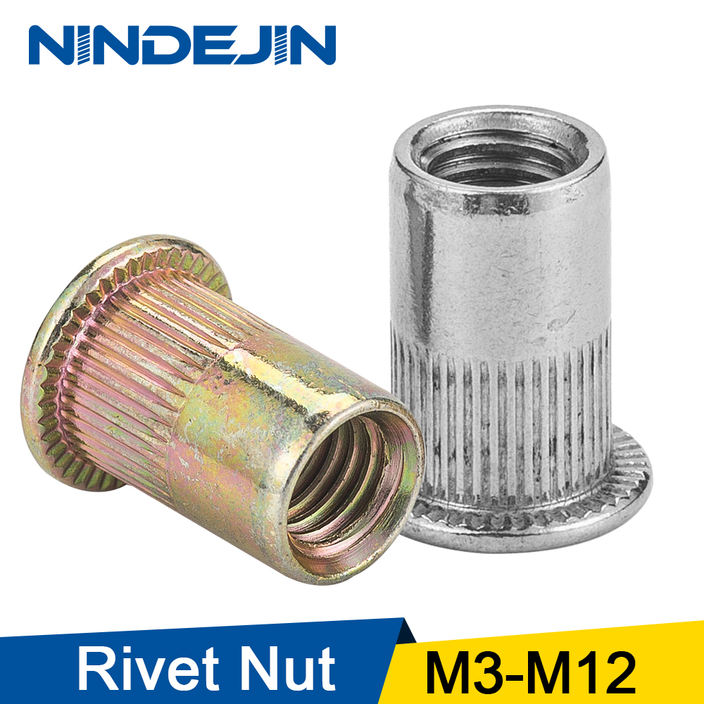 NINDEJIN 2-30 pièces tête plate rivet écrou acier inoxydable m3 m4 m5 m6 m8 m10 m12 rivécrou zingué rivet écrou fileté