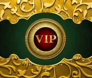 VIP The cover AG