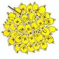 30 шт./лот Милая Желтая утка Мини-наклейка украшение Diy альбом дневник Скрапбукинг этикетка стикер кавайные Канцтовары
