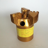 50pcs PDC Composite Sheet And 112mm,122mm,125mm Well Drilling PDC Drag Bit