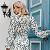 Sexy Summer Dress 2021 Women Spring Summer Long Sleeve Print A-line Women's V-neck Print Slim Dresses Vestidos Robe Female  5