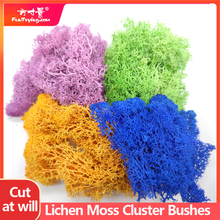 30G Lichen Moss cluster for bushes|model trees foliage scale model building material miniature tree model DIY layout dioramas