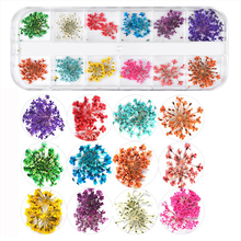 Real Nail Lace Dried Flowers Leaf Nail Art Decoration DIY Tips Small Flowers Nails Stickers for Manicure Tools Nails Accesorios