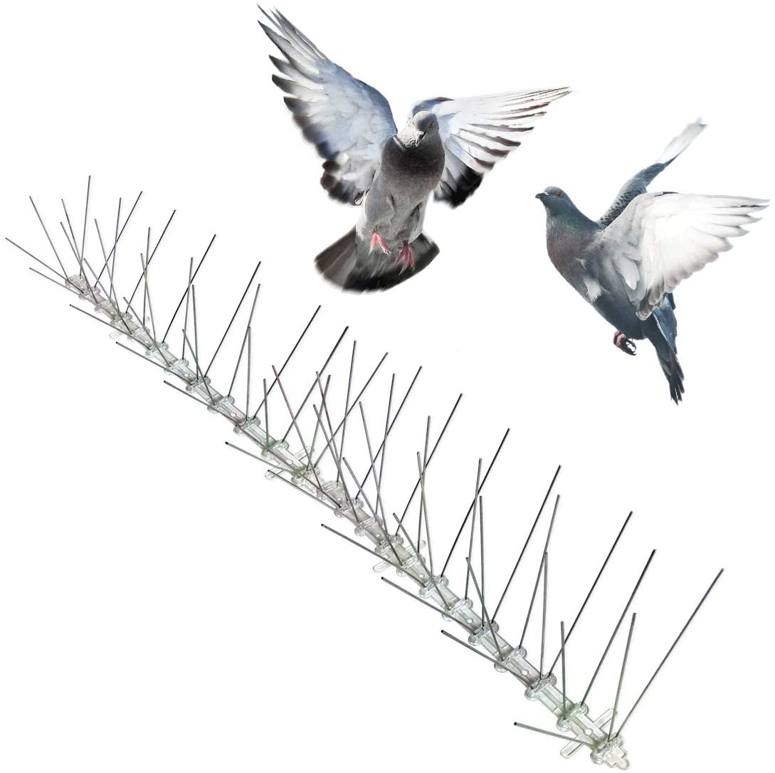 Stainless Steel Anti Bird Spikes For Pigeons Small Birds Cats, Anti Climb Wall Fence Bird Arrow Repellers Spikes Cover