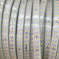 Waterproof IP68 Double Row 220 240V 100M 2835 Led Strip Light 180leds/m Tape Cold/ Neutral/ Warm White Outdoor High Brightness