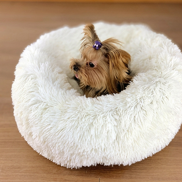 Round Plush Dogs Bed  1