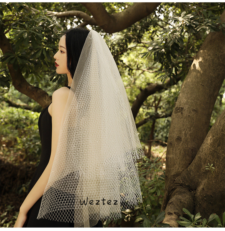 Bridal Veil Wedding Dress New Spray Gold Big Net Long Section Spray Gold Big Net Champagne Color Decoration TS260