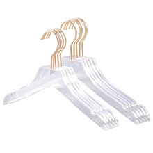 5 Pcs Clear Acrylic Clothes Hanger with Gold Hook, Transparent Shirts Dress Hanger with Notches for Lady Kids