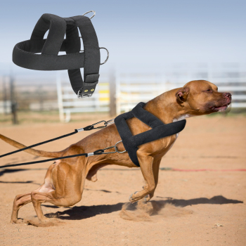 Weight Pulling Harness