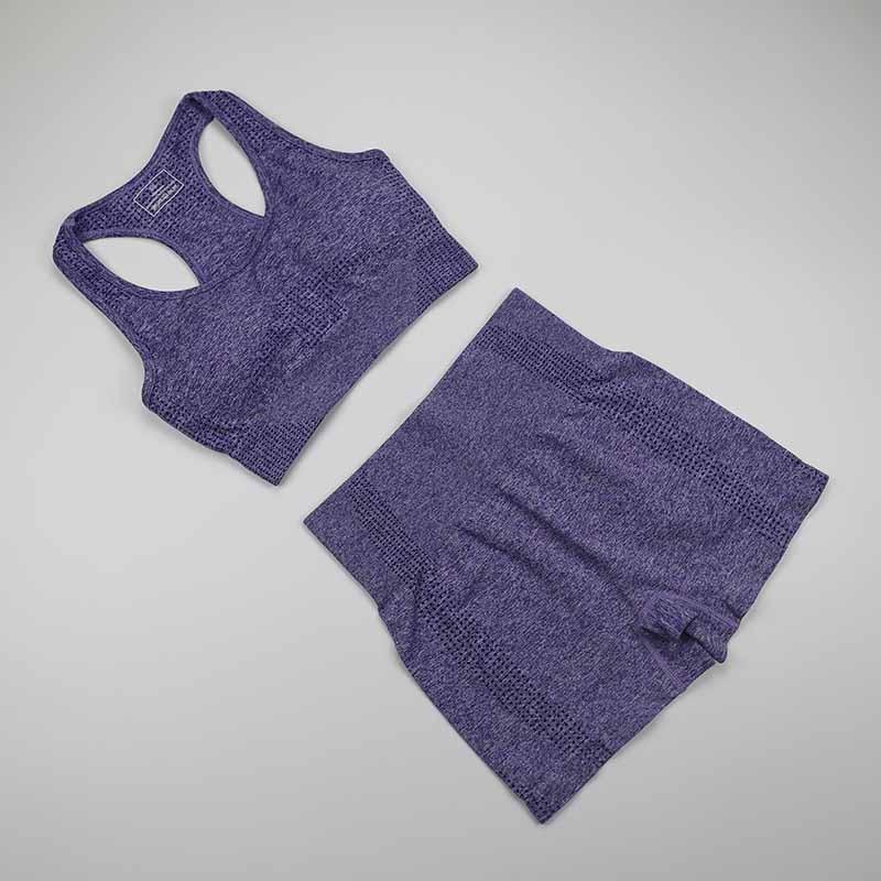 Workout Clothes For Women Seamless Yoga Sports Suits Sport Bra Top+High Waist Fitness Shorts 2 Piece Gym Set Running Sportswear