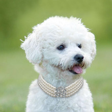 Elegant Crystal Dog Collar Necklace Choker Style Rhinestone Pearl Luxury Pet Accessories Necklaces For Chihuahua D40