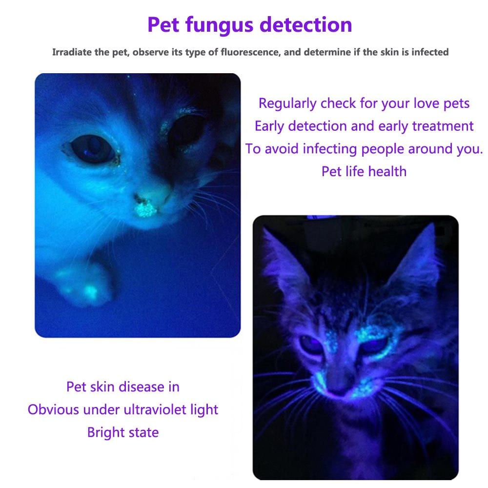 AloneFire SV004 LG Ultra Violet Light 5W High Power 365nm/395nm uv flashlight UV Black Light Pet Urine Stains Detector Scorpion