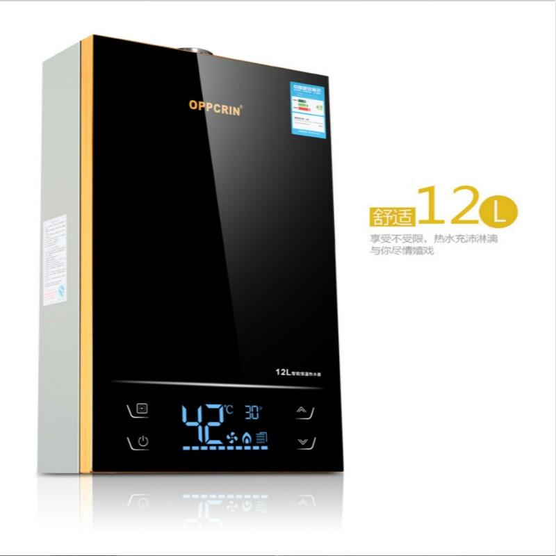 12L бытовой газовый водонагреватель Интеллектуальный термостат преобразования частоты нагреватель горячей воды природный газ сильный эмиссия