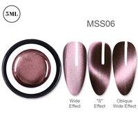 BP-MSS06