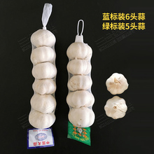 100pcs Garlic net bag packing net Ginger net bag bag net bag preservation net рассел джонс а программирование asp net средствами vb net