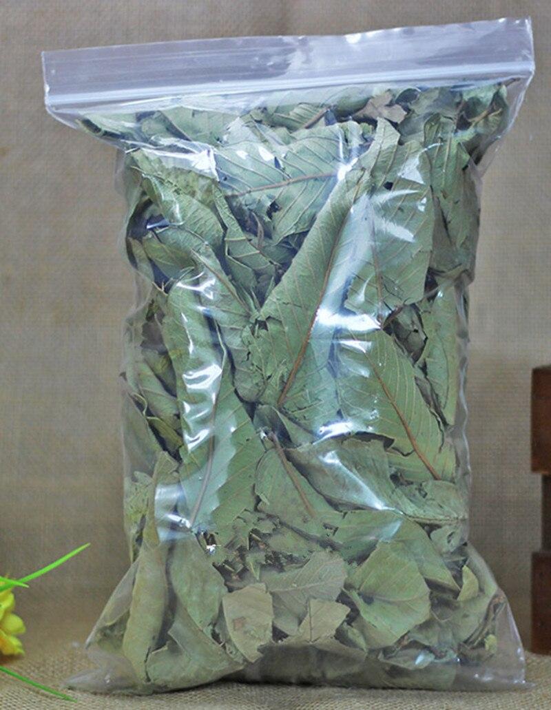 Hojas De Guava Secas naturales, 100%, Hojas De Guava, Hojas De Guava, anticaída De cabello