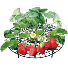 5 PCS Strawberry Stand Frame Holder Balcony Planting Rack Fruit Support Plant Flower Climbing Vine Pillar Gardening Stand недорого
