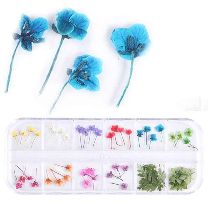 12 Grid/Box Kristall Epoxy Füllstoff Trockenen Blume Handgemachte Blumen DIY Handwerk Silikon Formen UV Harz Füllung Material DIY zubehör