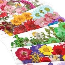 1 sac bricolage fleurs séchées résine moule remplissages vraie fleur séchée sec Plantsendant collier fabrication de bijoux artisanat bricolage accessoires