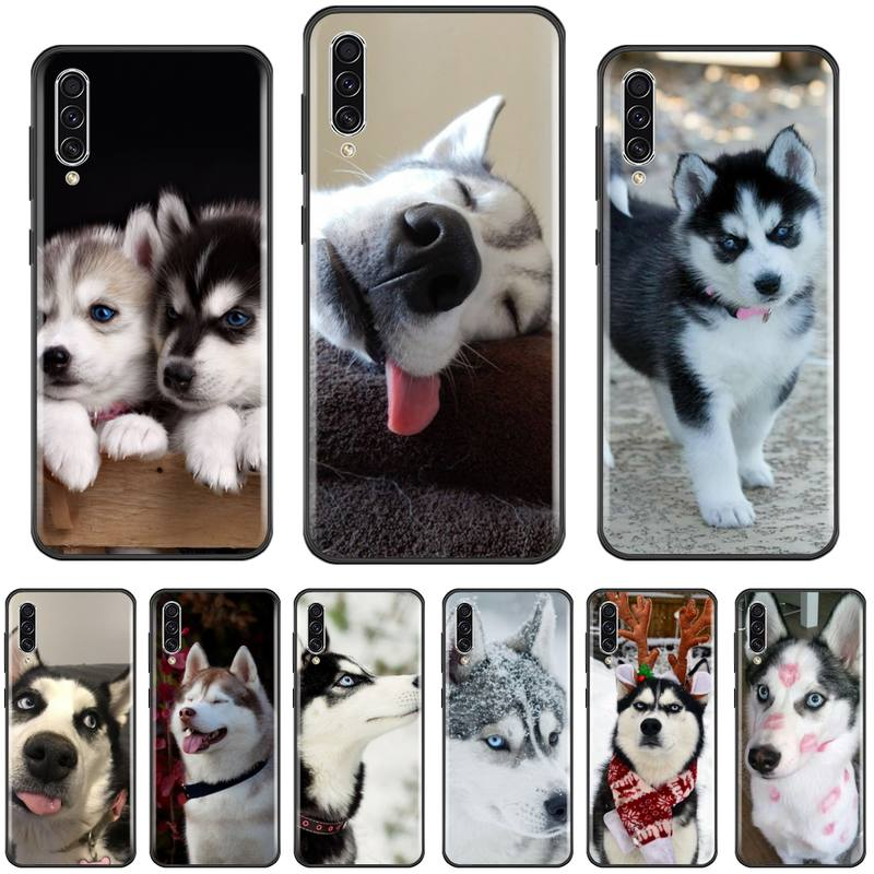 cute animal Husky <font><b>dog</b></font> TPU black Phone <font><b>Case</b></font> Cover Hull For <font><b>Samsung</b></font> A20 A30 30s A40 A7 2018 J2 <font><b>J7</b></font> prime J4 Plus S5 Note 9 10 Plus image