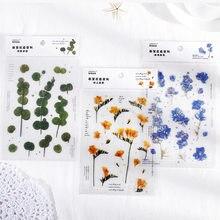 Mohamm 1 Uds serie plana de primavera a Flor pegatina decorativa mascota creativa Colegio estacionario tela suministros