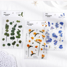 Decoration Sticker Flower-Series School-Supplies Mohamm Creative PET 1pcs Flat-Spring