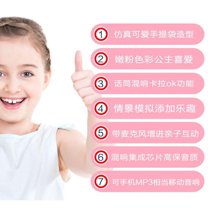 Polaroid 1706 Children Music Handbag Microphone Karaoke GIRL'S Play House Music Toy