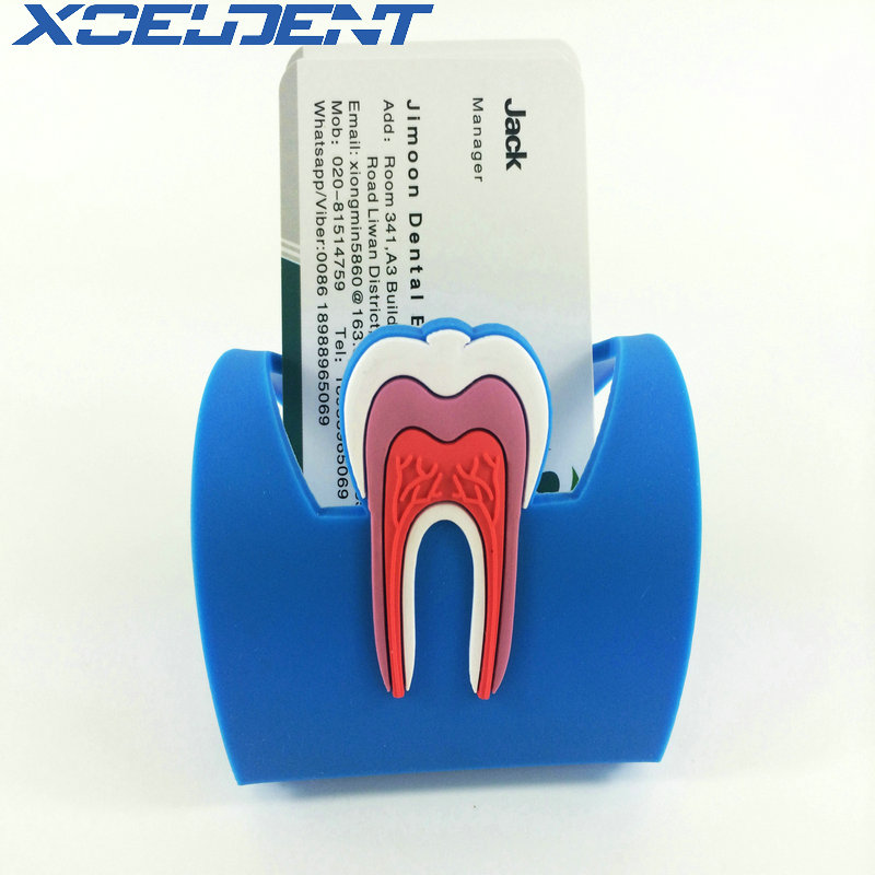 1pcs Card Stand For Dental Clinic Cute Name Card Holders Dental Rubber Teeth-Shape Molar Shaped Phone Display Dentist Gift