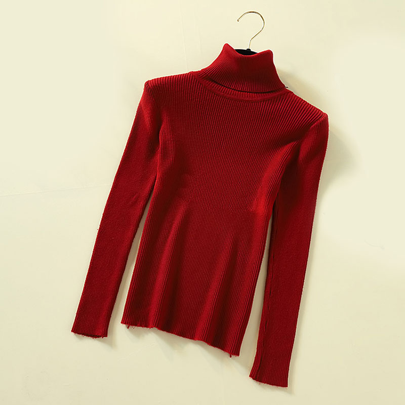 Lucyever Turtleneck Women Pullover Sweater Spring Jumper Knitted Basic Top Fashion Autumn Long Sleeve Korean Ladies Clothes 2020 4