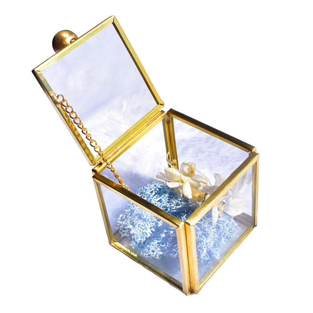 Geometrical Clear Glass Jewelry Box Jewelry Organize Holder Plants Container