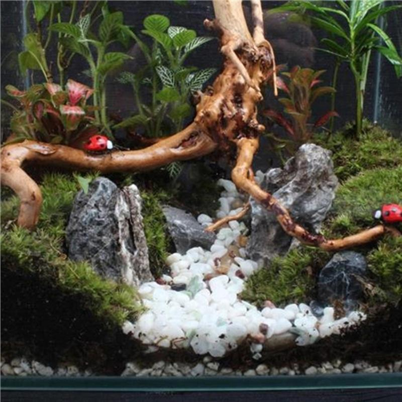 UEETEK Aquarium Decorations Natural Branch Driftwood For Fish Tank Decoration Fish Tank Aquarium Decoration Decorative Sinker Pakistan